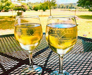 Hickory Hills Vineyards wine