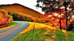 Scenic Drive in fall by John Wilcher