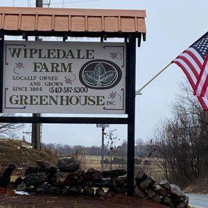 Wipledale Farm Greenhouse