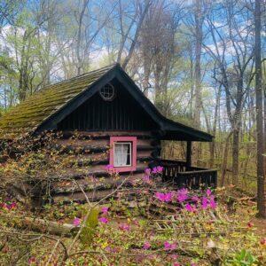 Spring Lake Farm